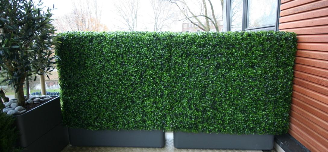 Zijden beplanting (kunstbeplanting) buxus-haag-uv-zijde-balkonaankleding-amstelveen.jpg