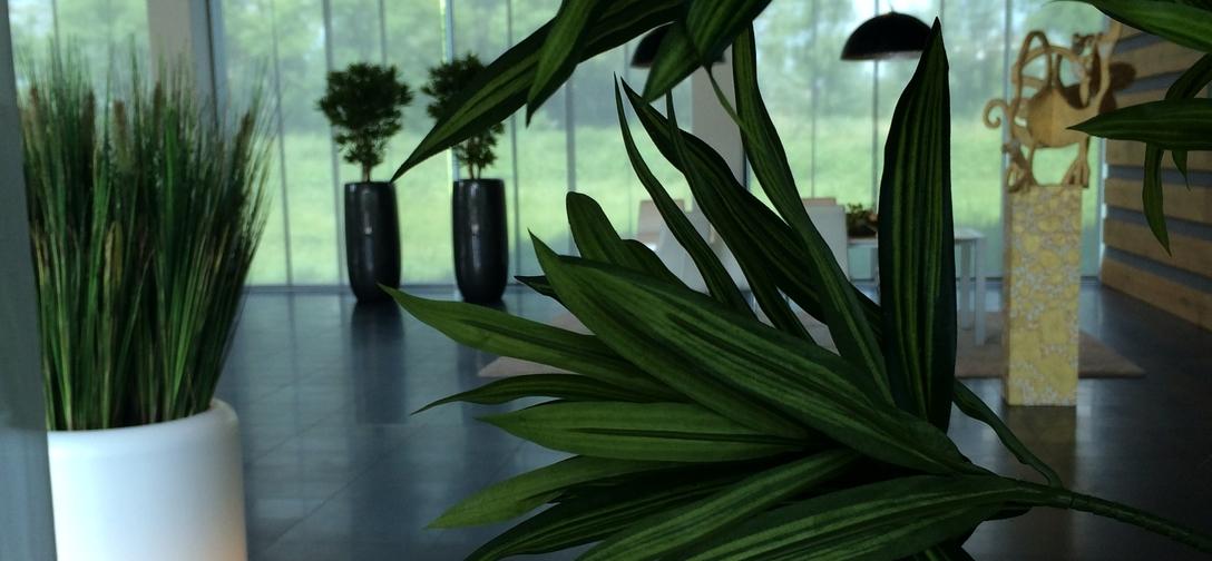 Zijden beplanting (kunstbeplanting) img-1277.jpg
