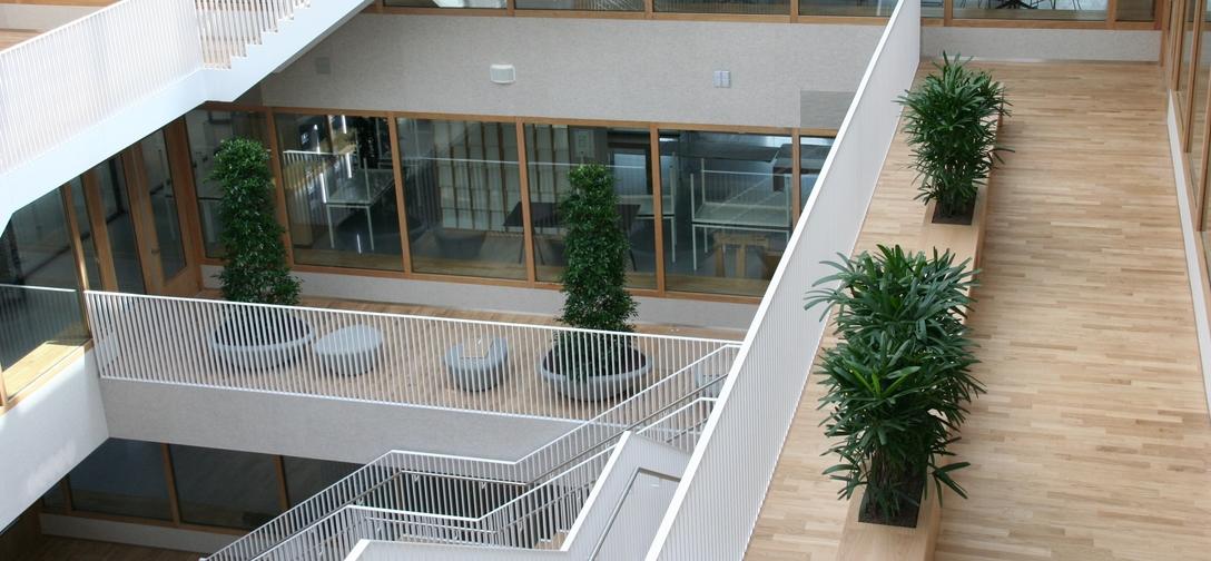 Interieurbeplanting - Rotterdam kantoortuin beplanting - fader.jpg