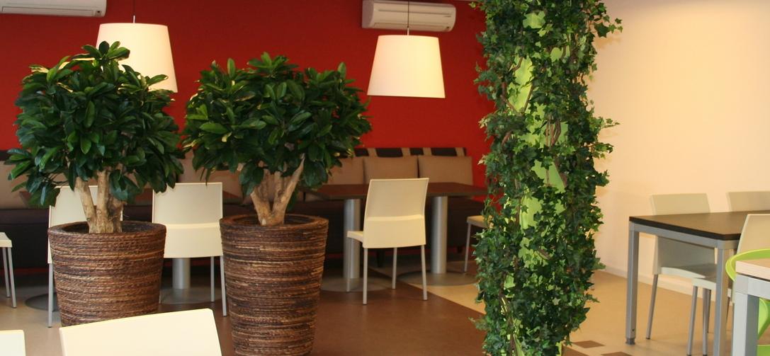 Zijden beplanting (kunstbeplanting) zijden-decoratie-fader.jpg