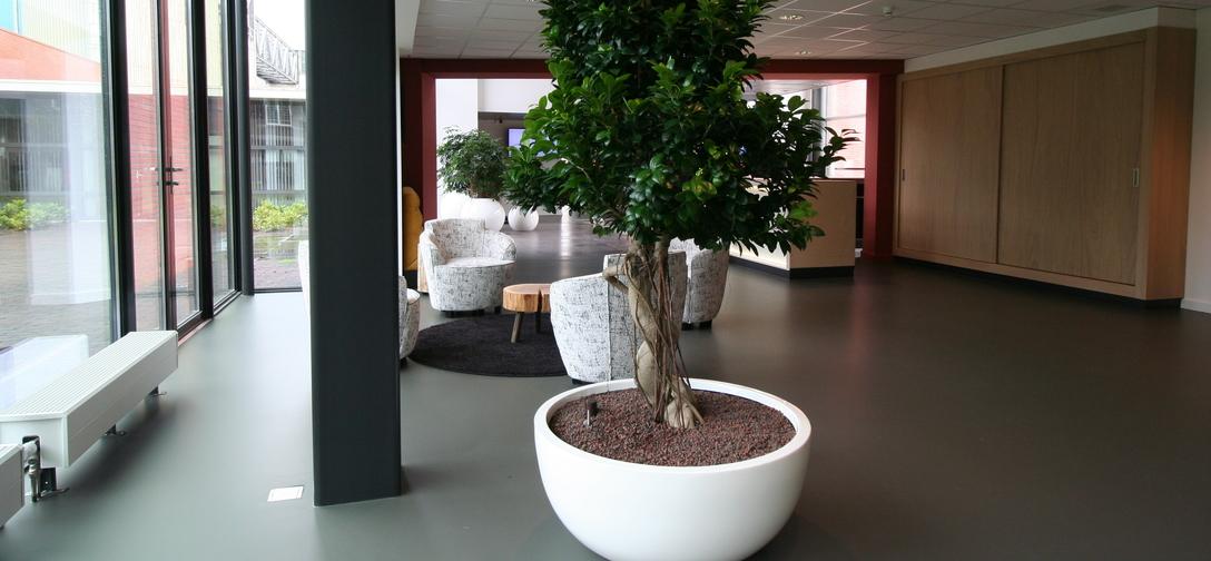 Design plant meubels img-0502-fader.jpg