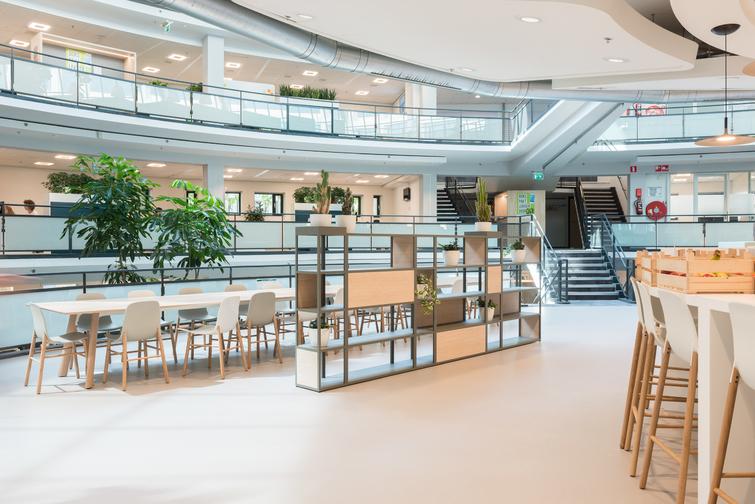 Kantoorbeplanting Rotterdam Centrum rotterdam-centrum.jpg