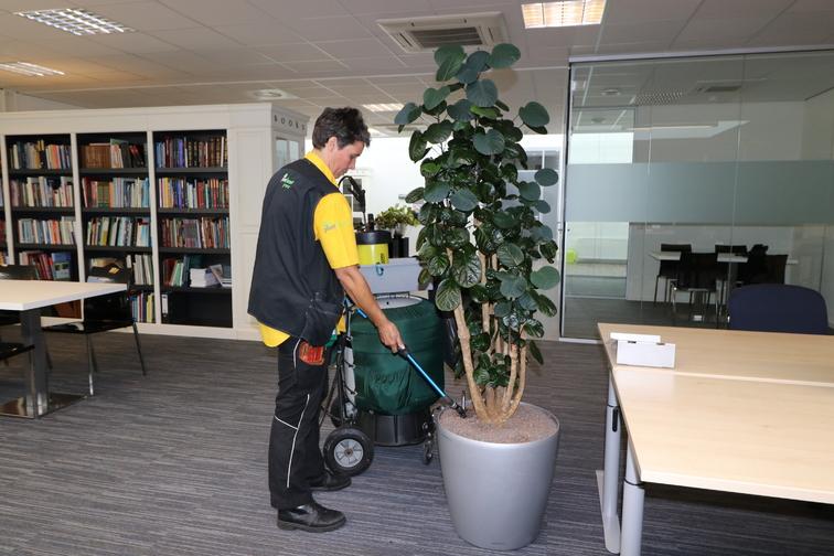 Onderhoud beplanting onderhoud-planten-water-gevenimg-0609.jpg