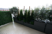 Balkonbeplanting_zijde_Amstelveen.jpg