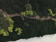 mospaneel-met-hout.jpg