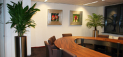 hd-vergaderruimte-interieurbeplanting.jpg