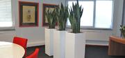 hd-vergaderruimte-interieurbeplanting3.jpg