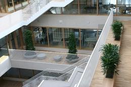 Interieurbeplanting - Rotterdam