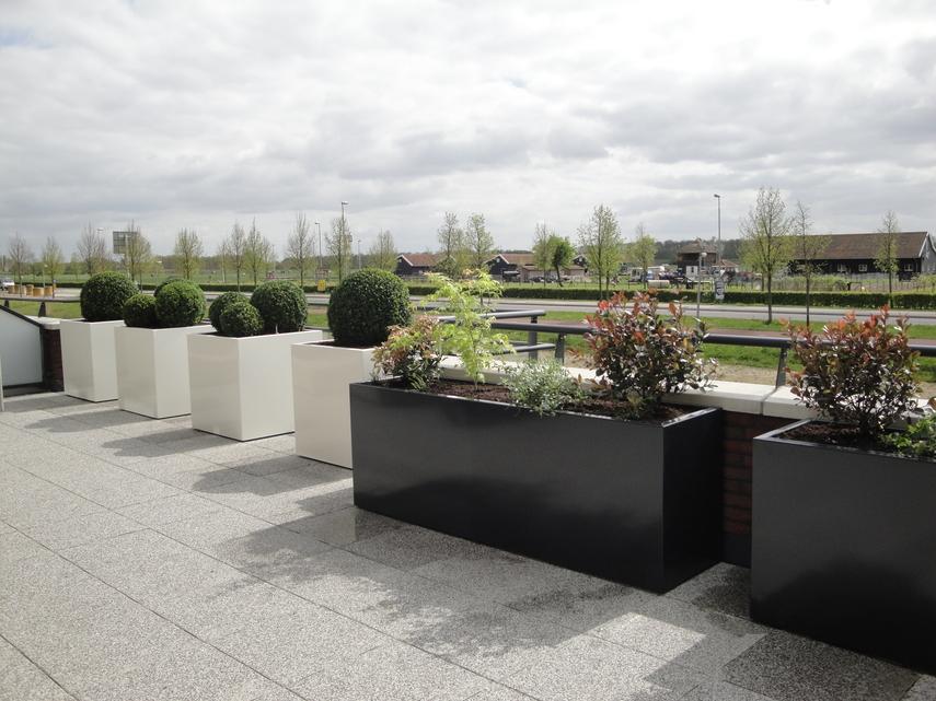 Dakterras Of Balkon : Dakterras beplanting u plant invest groene sfeermakers