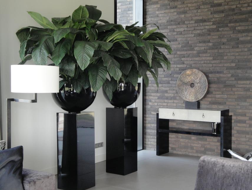 Wonderbaarlijk Design plant meubels – Plant Invest » Groene Sfeermakers GD-82